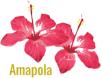 Brindis de Amapola (1)